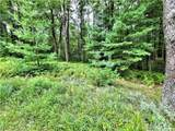 ** Old Tacy Road - Photo 27