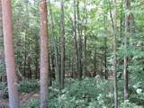 Lot 59 Perry Pond Road (Nys Rt 97) - Photo 10