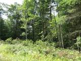 Lot 59 Perry Pond Road (Nys Rt 97) - Photo 2