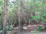 Lot 59 Perry Pond Road (Nys Rt 97) - Photo 3