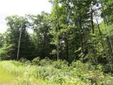 Lot 59 Perry Pond Road (Nys Rt 97) - Photo 5