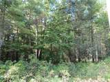 Lot 59 Perry Pond Road (Nys Rt 97) - Photo 6