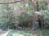 Lot 59 Perry Pond Road (Nys Rt 97) - Photo 8