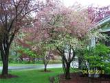 18 Jefferson Avenue - Photo 15