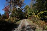 577 White Roe Lake Road - Photo 13