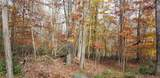 Lot 42 Perry Pond Road (Nys Rt 97) - Photo 2