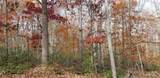 Lot 42 Perry Pond Road (Nys Rt 97) - Photo 3