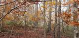 Lot 42 Perry Pond Road (Nys Rt 97) - Photo 5