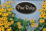 15 Pineridge Road - Photo 2