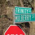 7 Mulberry Street - Photo 29