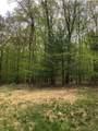 TBD Woods Road - Photo 6