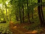 Creek Lane - Photo 7