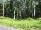 Tillson Lake Road - Photo 2