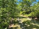 Treetops Trail - Photo 2
