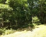 Treetops Trail - Photo 6