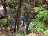 Lot 137 Main Black Forest Road - Photo 11