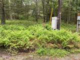 Lot 137 Main Black Forest Road - Photo 6