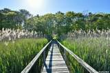 11 Fiddler Crab Trail - Photo 4