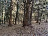 1532 Beaverkill Road - Photo 24