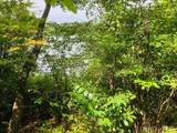 1616 Wenonah Trail - Photo 29