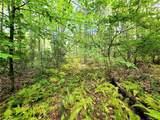 37 Trillium Trail - Photo 1