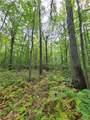 37 Trillium Trail - Photo 14