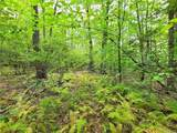 37 Trillium Trail - Photo 19