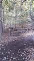 53 Sylvan Trail - Photo 20