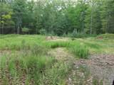 White Pine Trail - Photo 1