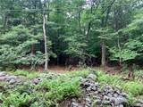 309 Upper Pine Kill Road - Photo 10