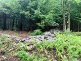 309 Upper Pine Kill Road - Photo 15