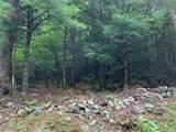 309 Upper Pine Kill Road - Photo 3