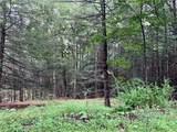 309 Upper Pine Kill Road - Photo 8