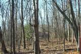 12 Kingfisher Trail - Photo 24