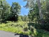 Kingfisher & Junco Trail - Photo 1