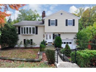 20 Walnut Street, Tarrytown, NY 10591 (MLS #4643900) :: William Raveis Legends Realty Group