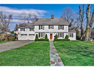 6 Wellington Terrace, White Plains, NY 10607 (MLS #4705350) :: William Raveis Legends Realty Group
