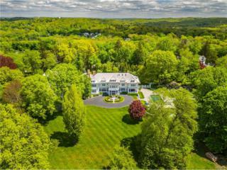 224 Central Drive, Briarcliff Manor, NY 10510 (MLS #4709670) :: William Raveis Legends Realty Group