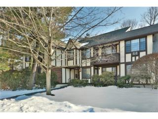 76 Foxwood Drive #8, Pleasantville, NY 10570 (MLS #4709865) :: William Raveis Legends Realty Group