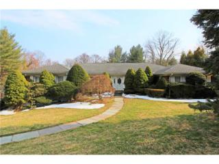 21 Allan Drive, White Plains, NY 10605 (MLS #4711133) :: William Raveis Legends Realty Group