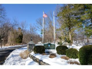 60 Trailhead Lane, Tarrytown, NY 10591 (MLS #4711140) :: William Raveis Legends Realty Group
