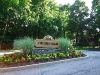 55 Deerfield Lane, Ossining, NY 10562 (MLS #4711343) :: William Raveis Legends Realty Group