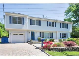 107 Lake Street, Pleasantville, NY 10570 (MLS #4711582) :: William Raveis Legends Realty Group