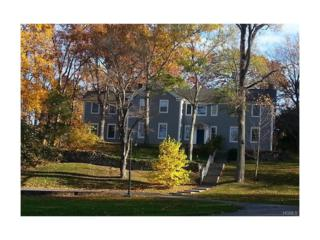 808/810 Pinesbridge Road, Ossining, NY 10562 (MLS #4711718) :: William Raveis Legends Realty Group