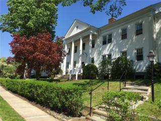 290 Manville Road N6, Pleasantville, NY 10570 (MLS #4711867) :: William Raveis Legends Realty Group