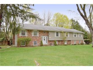126 Spook Rock Road, Montebello, NY 10901 (MLS #4711877) :: William Raveis Baer & McIntosh