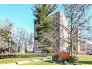 50 N Broadway 4E, White Plains, NY 10603 (MLS #4711891) :: William Raveis Legends Realty Group