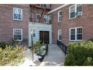 300 S Broadway 5-F, Tarrytown, NY 10591 (MLS #4711899) :: William Raveis Legends Realty Group