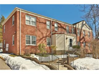 85 Broadway 1M, Pleasantville, NY 10570 (MLS #4712166) :: William Raveis Legends Realty Group