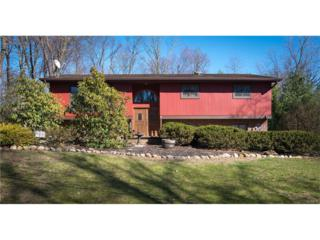 8 Lomond Avenue, Chestnut Ridge, NY 10977 (MLS #4712264) :: William Raveis Baer & McIntosh
